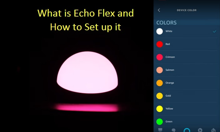 What is Echo Flex and How to Set up it