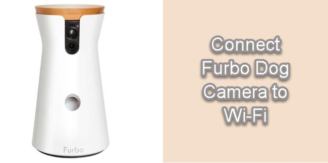 How to Connect Furbo To Wi-Fi